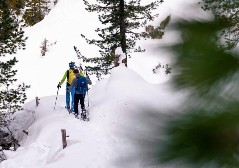 snowshoe_2019_by_story_teller_labs21